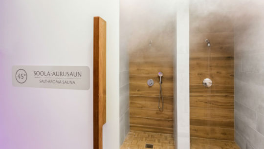 Sauna |Hestia Hotel Laulasmaa Spa veekeskus